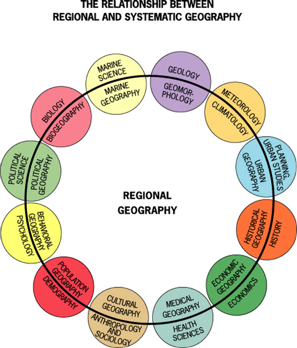 relationship between history and other social sciences Economics is closely related to the other social sciences, particularly politics, sociology (because some academics argue that economics is in fact a branch of sociology) and ethics there are also.